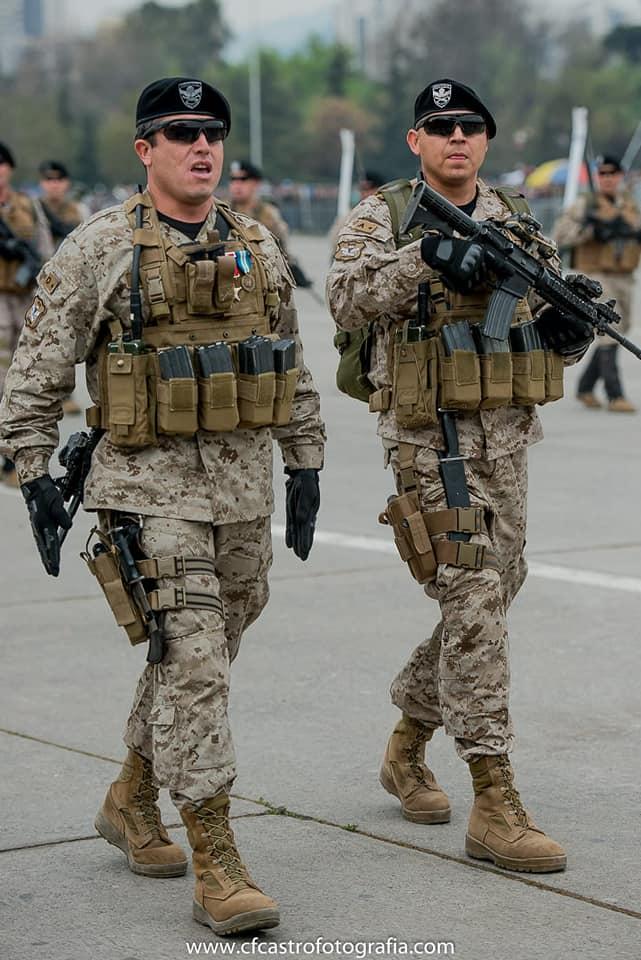 Armée Chilienne / Chile's armed forces / Fuerzas Armadas de Chile - Page 14 3b12