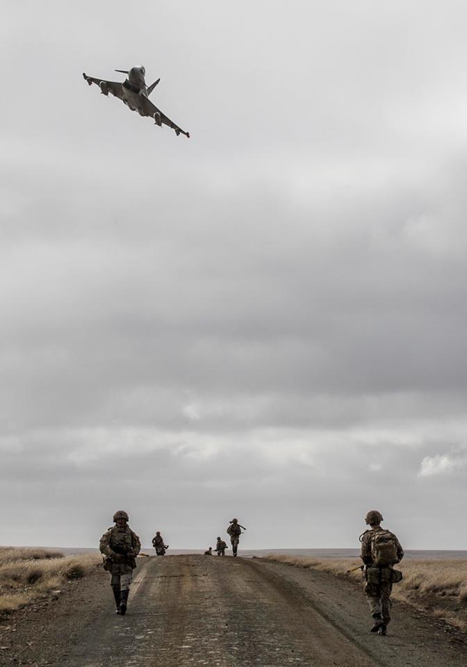 Armée Britannique/British Armed Forces - Page 11 44135