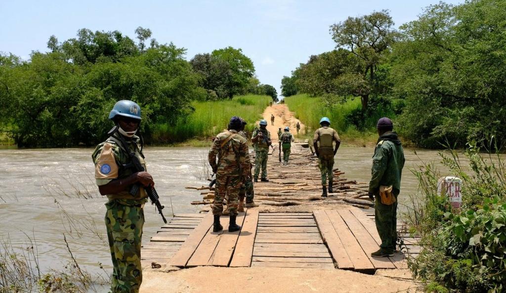 Intervention militaire en Centrafrique - Opération Sangaris - Page 5 455