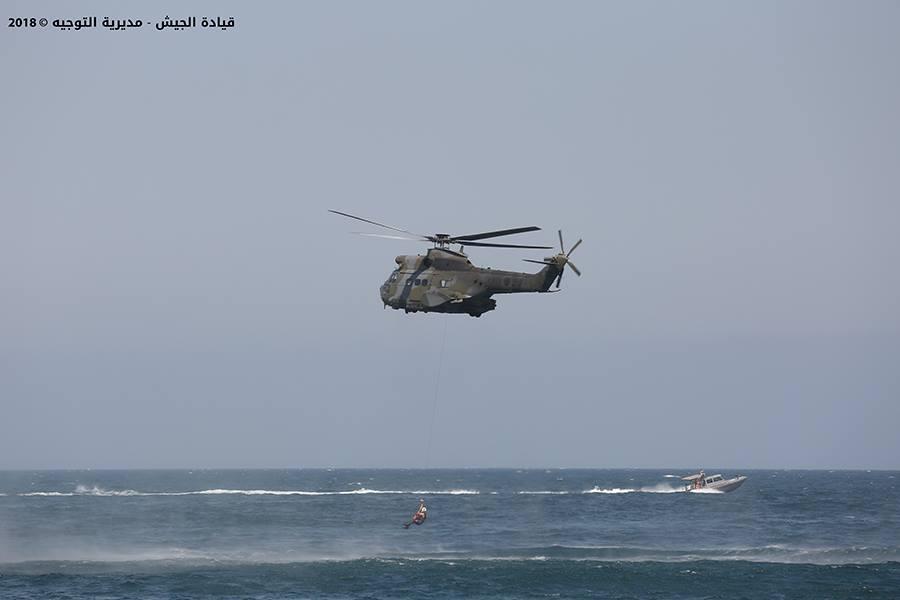Armée Libanaise / Lebanese Armed Forces (LAF) / القوات المسلحة اللبنانية - Page 22 4734