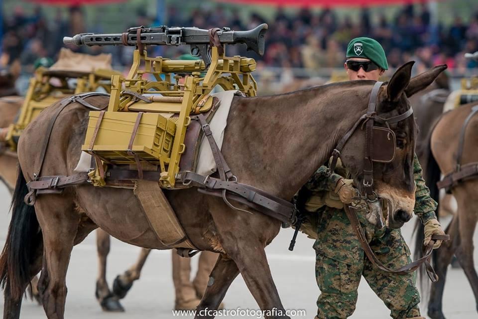 Armée Chilienne / Chile's armed forces / Fuerzas Armadas de Chile - Page 14 6a10