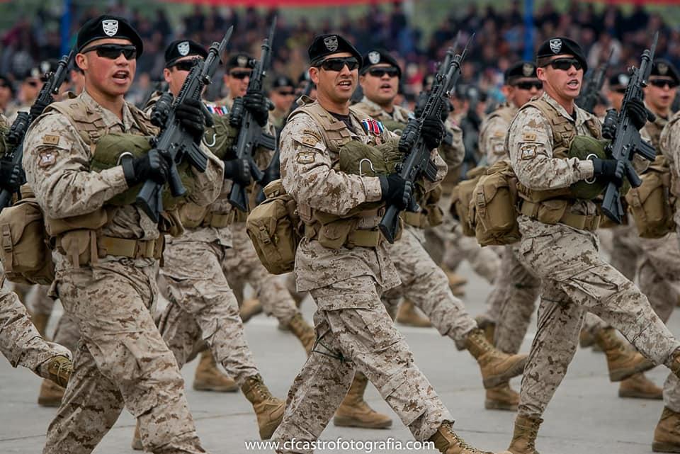 Armée Chilienne / Chile's armed forces / Fuerzas Armadas de Chile - Page 14 6a12