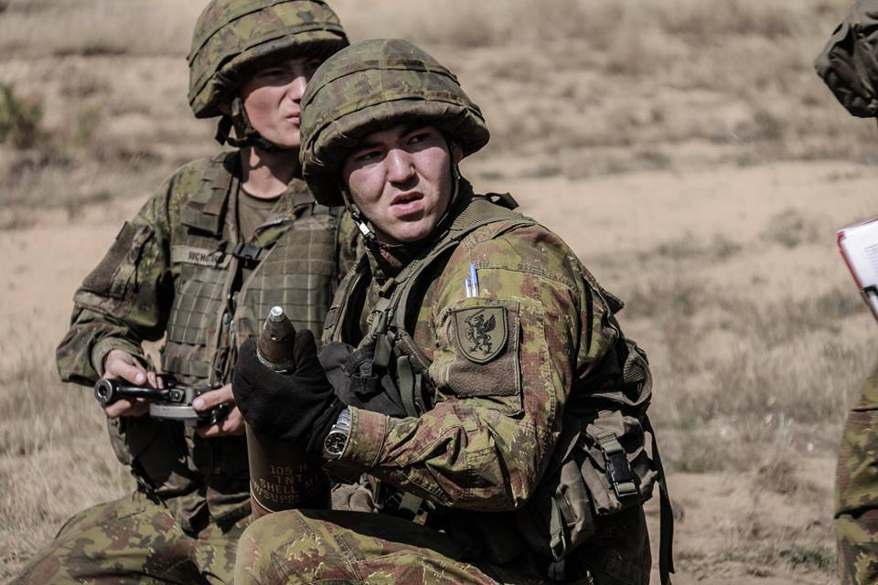 Armée lituanienne/Lithuanian Armed Forces - Page 6 710