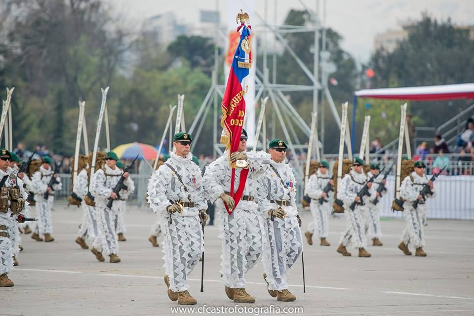 Armée Chilienne / Chile's armed forces / Fuerzas Armadas de Chile - Page 14 723