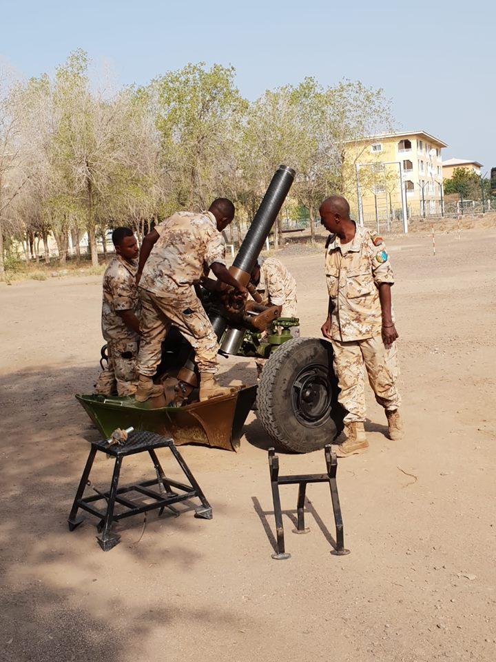Armée djiboutienne / Djibouti National Army - Page 3 830