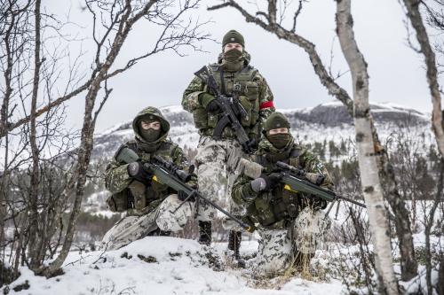 Armée norvegienne/Norwegian Armed Forces - Page 14 875