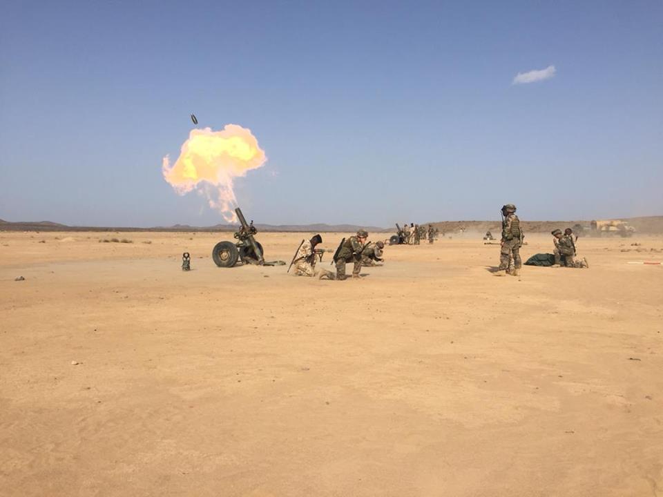 Armée djiboutienne / Djibouti National Army - Page 3 929