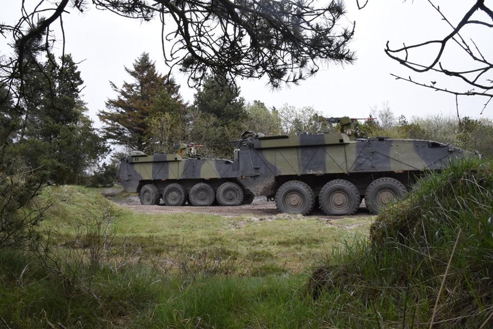 Armée danoise/Danish Defence(Forsvaret) - Page 12 _1088