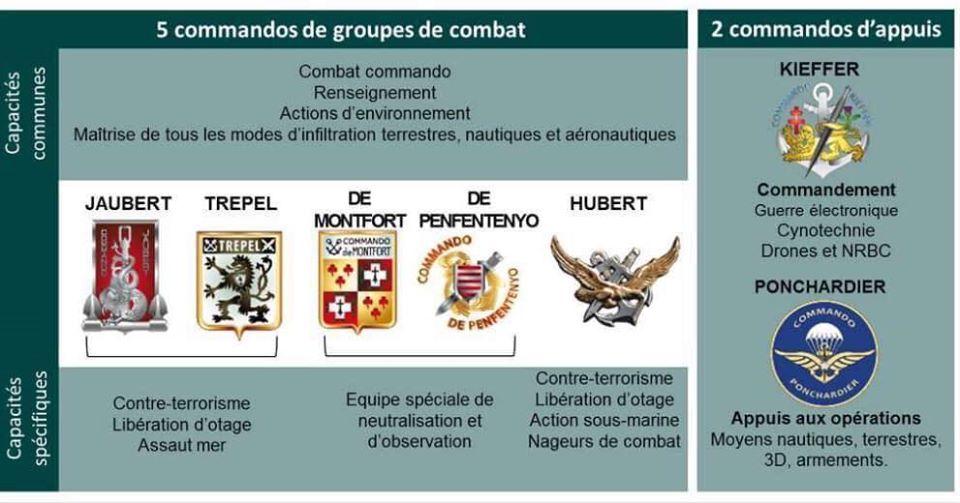 Armée Française / French Armed Forces - Page 30 _10_t-96