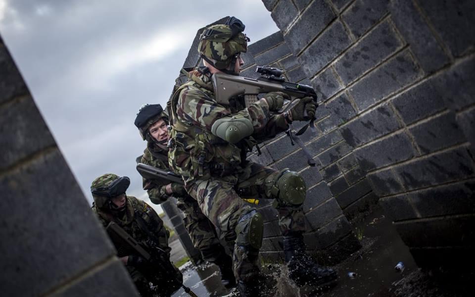 Armée Irlandaise/Irish Armed Forces - Page 3 _110
