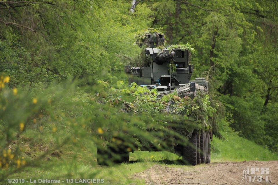 Armée Belge / Defensie van België / Belgian Army  - Page 20 _11a62