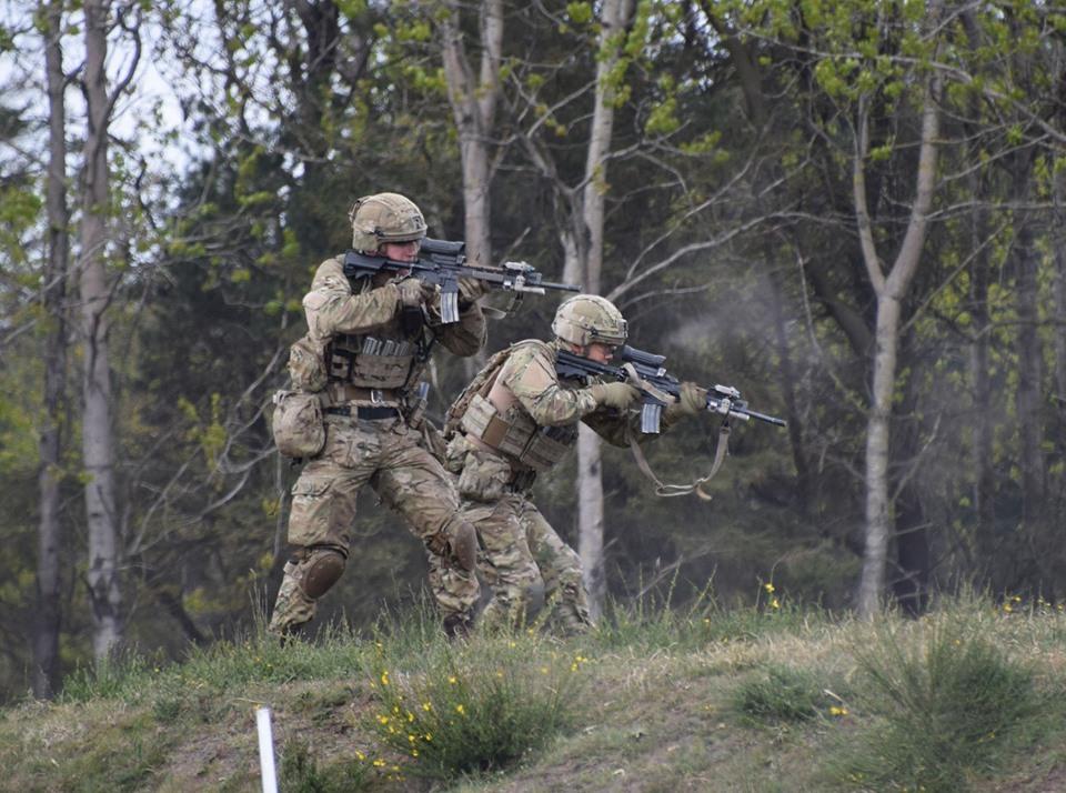 Armée danoise/Danish Defence(Forsvaret) - Page 12 _11a75