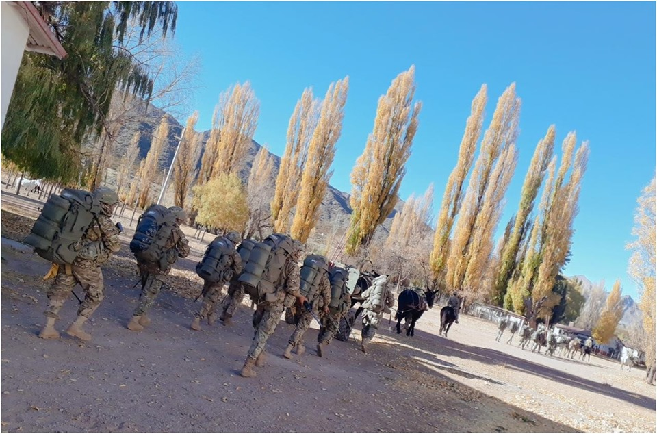 Armée argentine/Fuerzas Armadas de la Republica Argentina - Page 19 _11b69