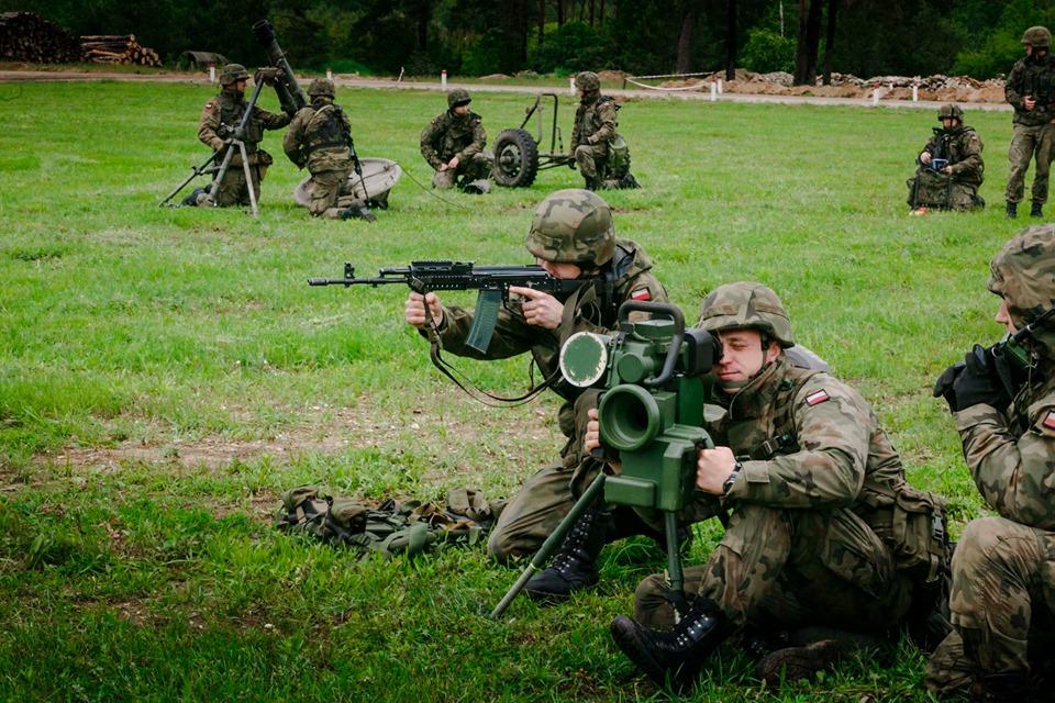 Les Forces Armées Polonaises/Polish Armed Forces - Page 25 _11ijp17