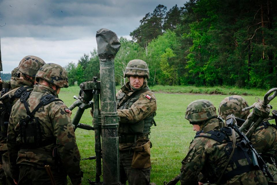 Les Forces Armées Polonaises/Polish Armed Forces - Page 25 _12a411