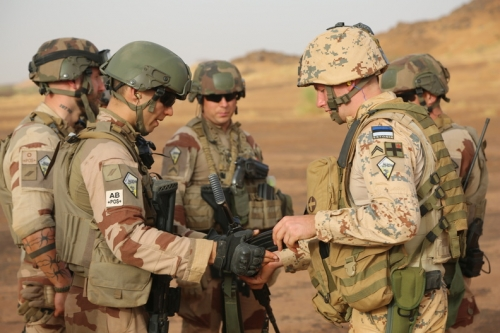 Intervention militaire au Mali - Opération Serval - Page 21 _12b282