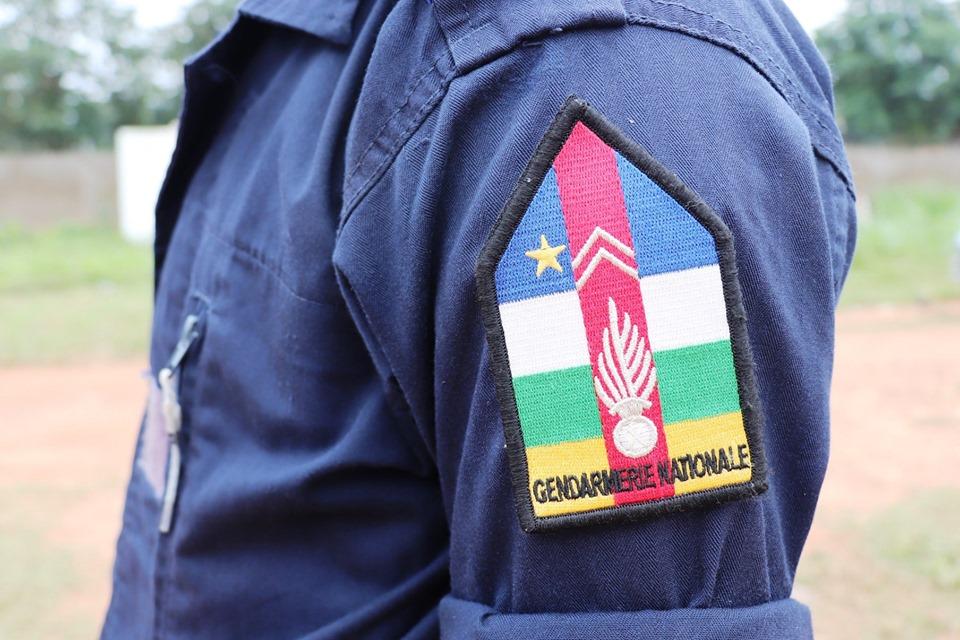 Armées de la République centrafricaine  - Page 9 _12b3a46