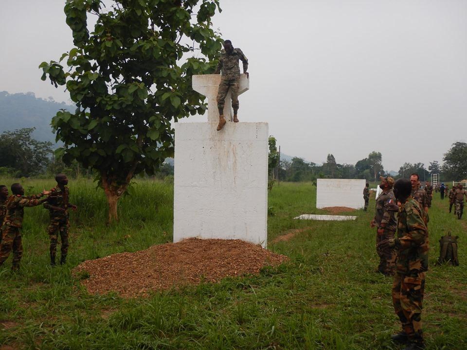 Armées de la République centrafricaine  - Page 9 _12c224