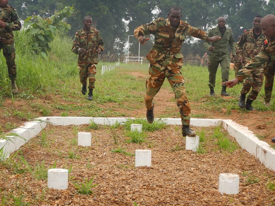 Armées de la République centrafricaine  - Page 9 _12d124