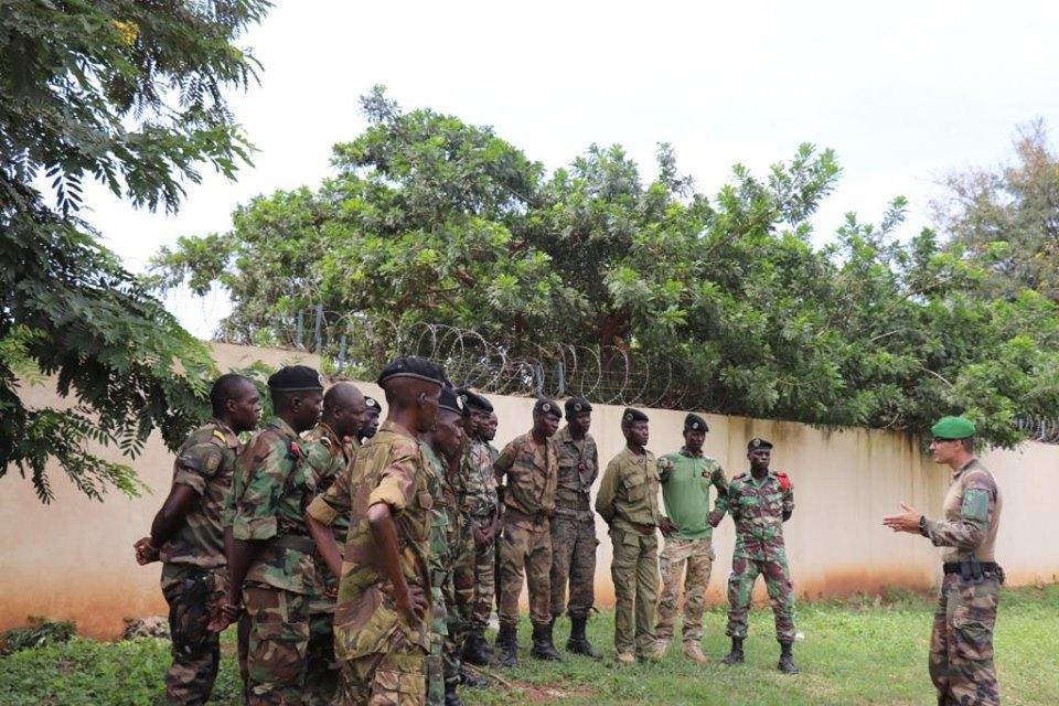 Armées de la République centrafricaine  - Page 9 _12d206
