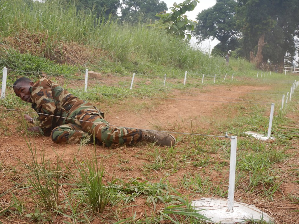 Armées de la République centrafricaine  - Page 9 _12d44