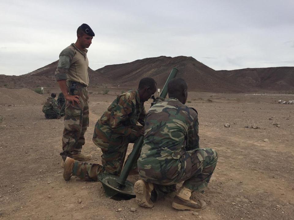 Armée djiboutienne / Djibouti National Army - Page 4 _12e418