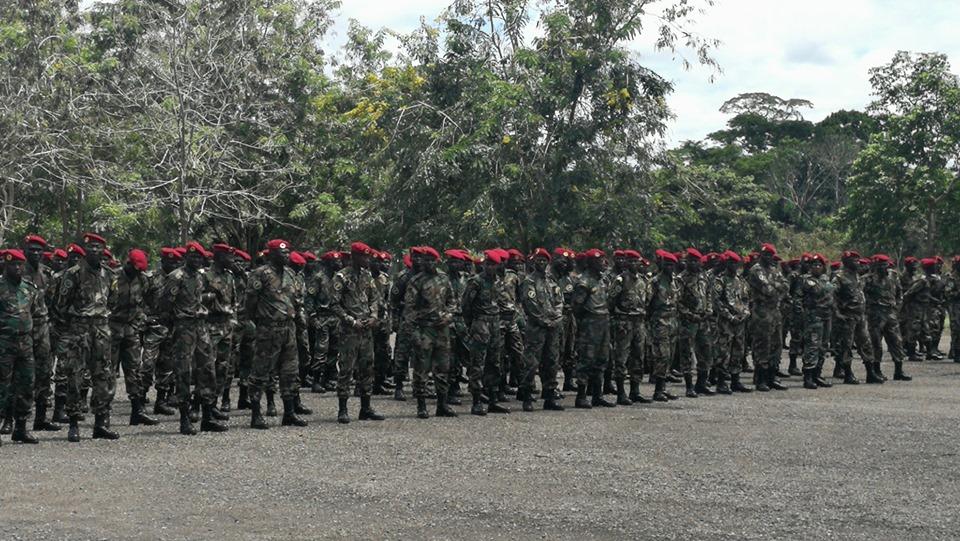 Armées de la République centrafricaine  - Page 10 _12e520