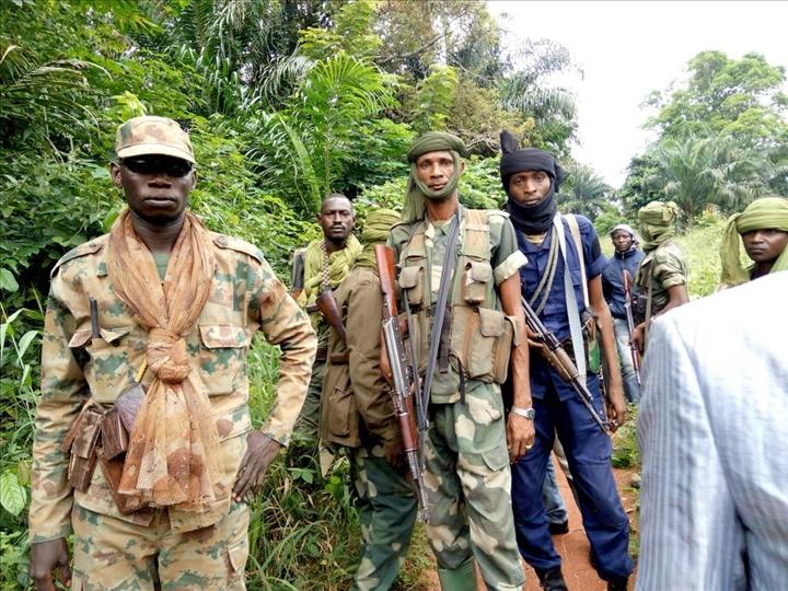 Intervention militaire en Centrafrique - Opération Sangaris - Page 2 _12e552