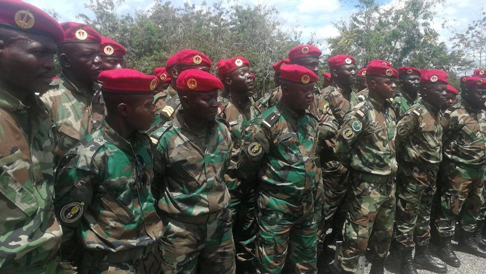 Armées de la République centrafricaine  - Page 10 _12e614