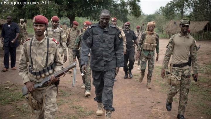 Intervention militaire en Centrafrique - Opération Sangaris - Page 2 _12f1110