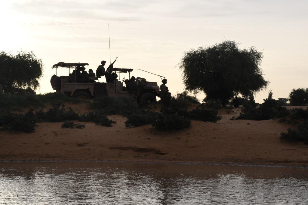 Intervention militaire au Mali - Opération Serval - Page 24 _12f1313