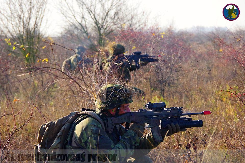 Armée tchèque/Czech Armed Forces - Page 12 _12f2123