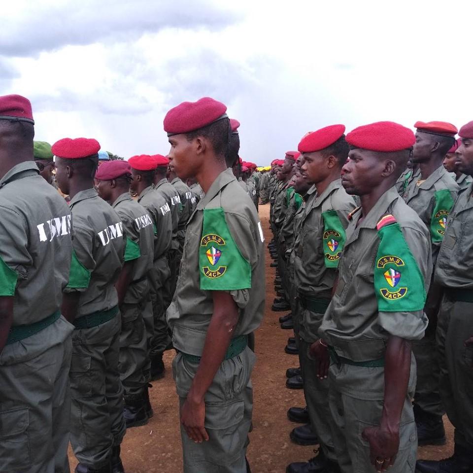 Armées de la République centrafricaine  - Page 10 _12f255