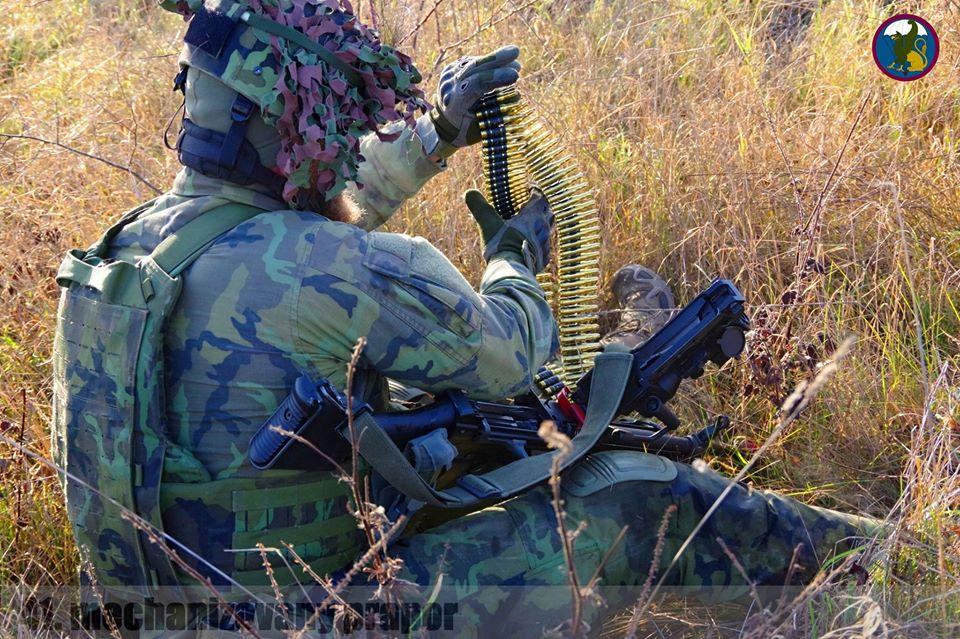 Armée tchèque/Czech Armed Forces - Page 12 _12f2a32