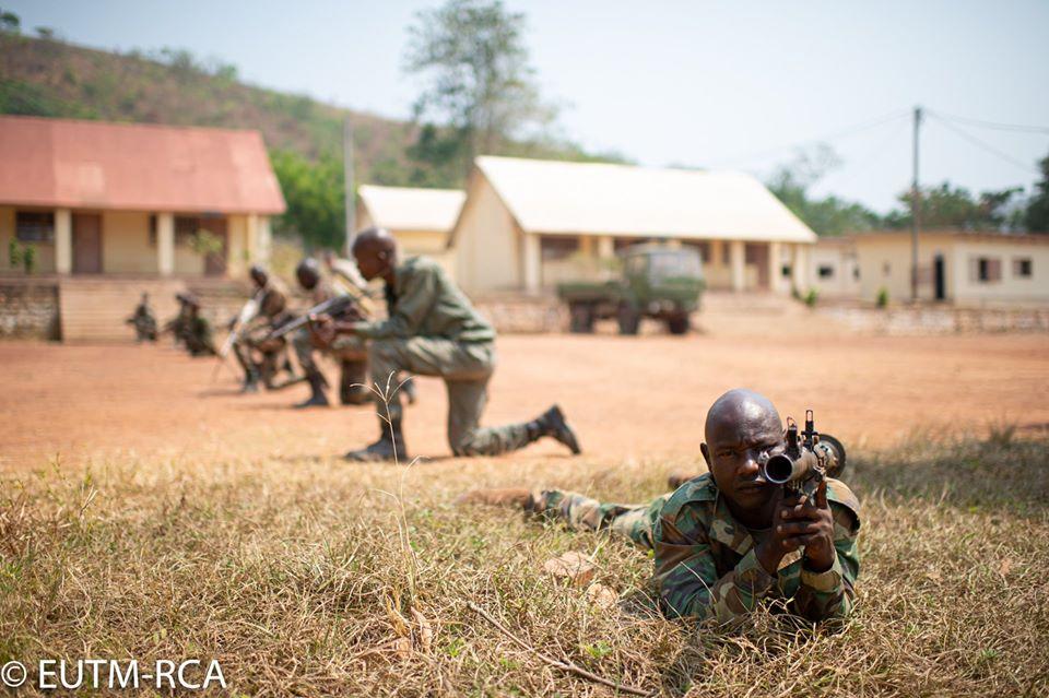 Armées de la République centrafricaine  - Page 10 _12f3195