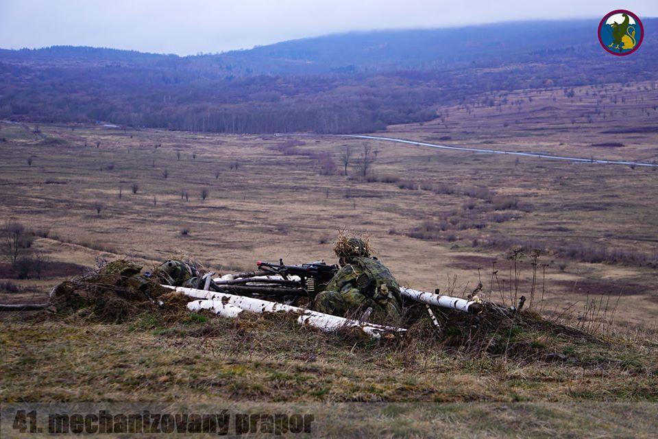 Armée tchèque/Czech Armed Forces - Page 12 _12f3341