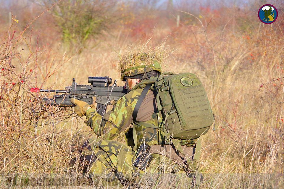 Armée tchèque/Czech Armed Forces - Page 12 _12f385