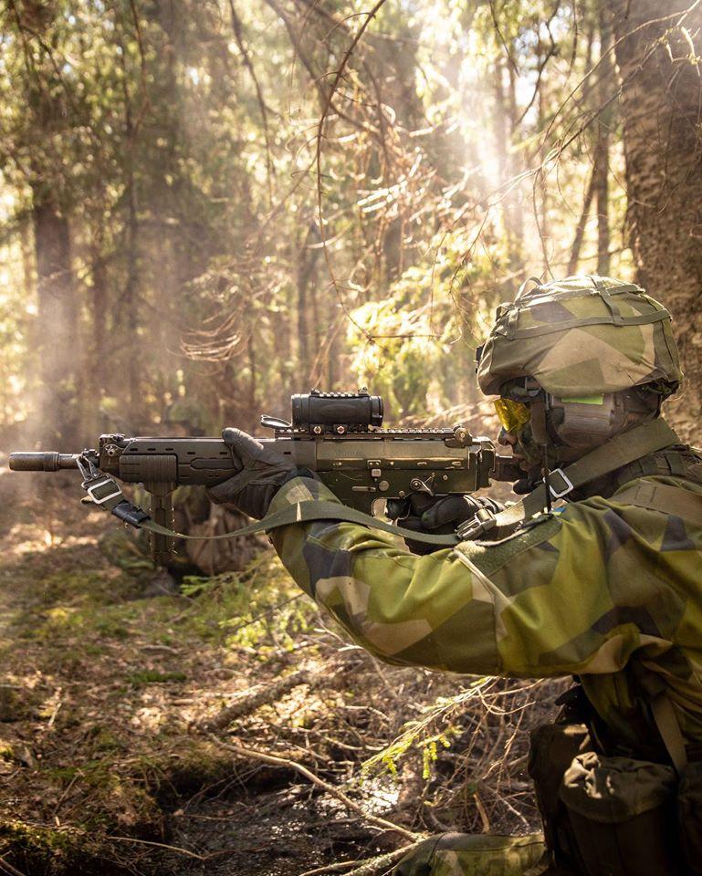 Swedish Armed Forces/Försvarsmakten - Page 14 _12f3858