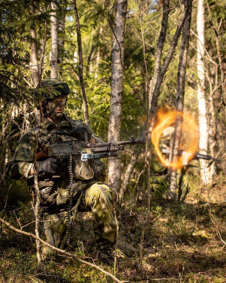 Swedish Armed Forces/Försvarsmakten - Page 14 _12f3859