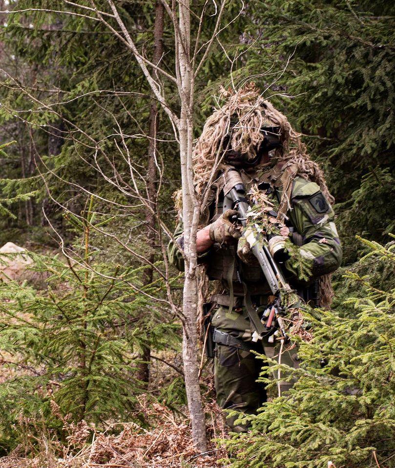 Swedish Armed Forces/Försvarsmakten - Page 14 _12f3860