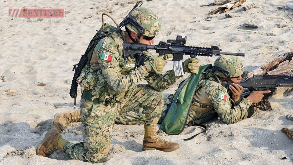 Armée Mexicaine / Mexican Armed Forces / Fuerzas Armadas de Mexico - Page 9 _12f3885