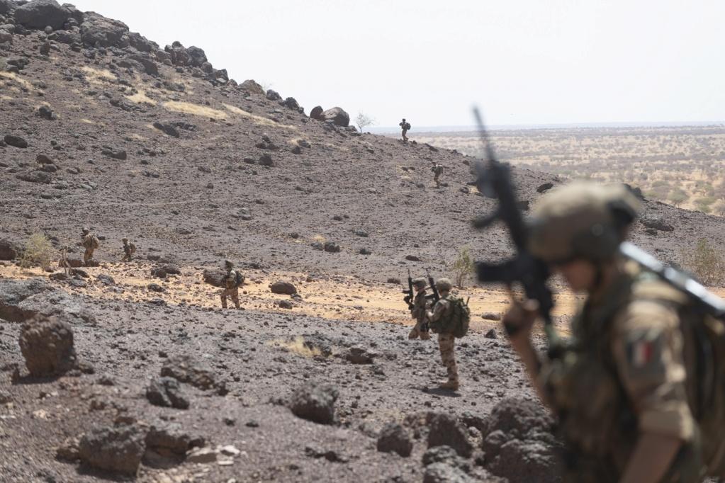 Intervention militaire au Mali - Opération Serval - Page 24 _12f3975