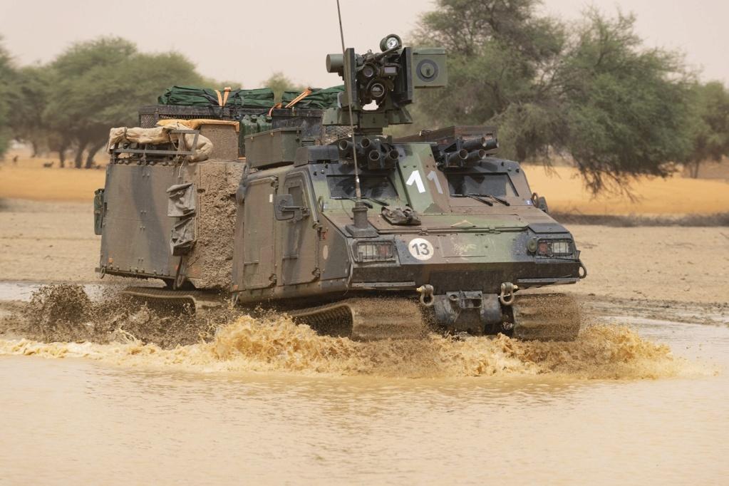 Intervention militaire au Mali - Opération Serval - Page 24 _12f3976