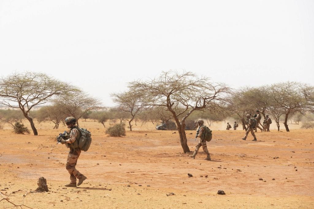 Intervention militaire au Mali - Opération Serval - Page 24 _12f3977