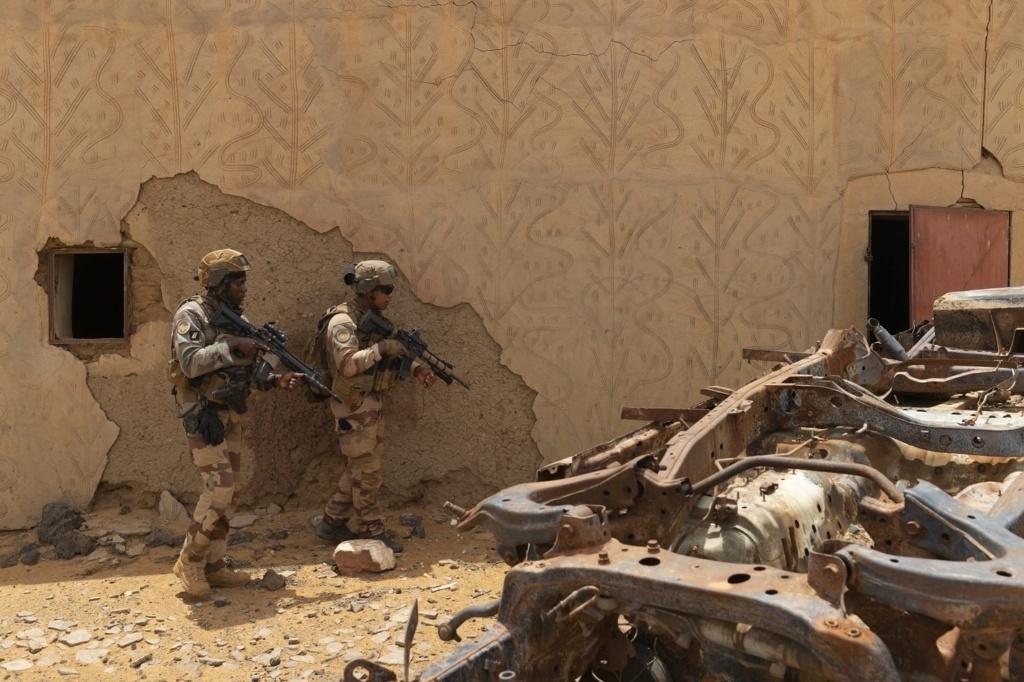 Intervention militaire au Mali - Opération Serval - Page 24 _12f3978