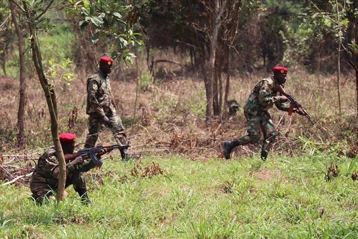 Intervention militaire en Centrafrique - Opération Sangaris - Page 2 _12f3b29