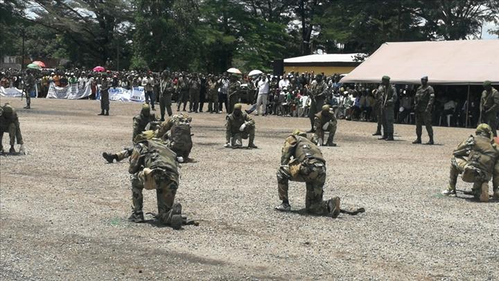 Armées de la République centrafricaine  - Page 10 _12f3b73