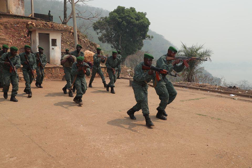 Armées de la République centrafricaine  - Page 10 _12f3d45
