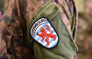 Armée Luxembourgeoise. - Page 3 _12f438