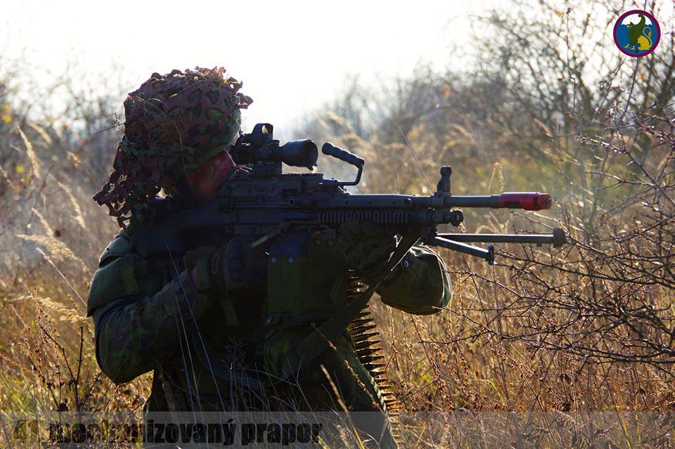 Armée tchèque/Czech Armed Forces - Page 12 _12f439
